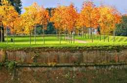 Lucca Medieval Walls in Autumn