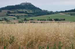 Tour of Cetona in Siena, Tuscany