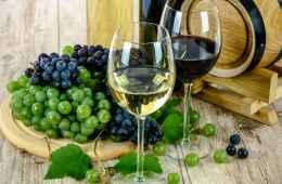 Italian wine tasting
