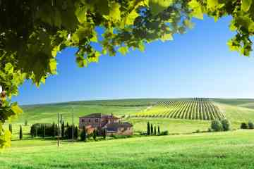 Private Tour of Tuscany in a Day: Pisa, Siena and San Gimignano