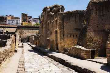 Private walking guided tour to Herculaneum archaeological area