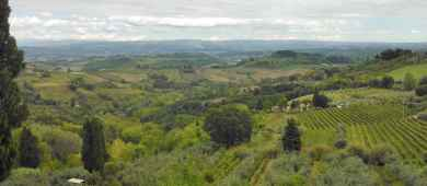 One day Tour of San Gimignano and Chiantishire (Tuscany)