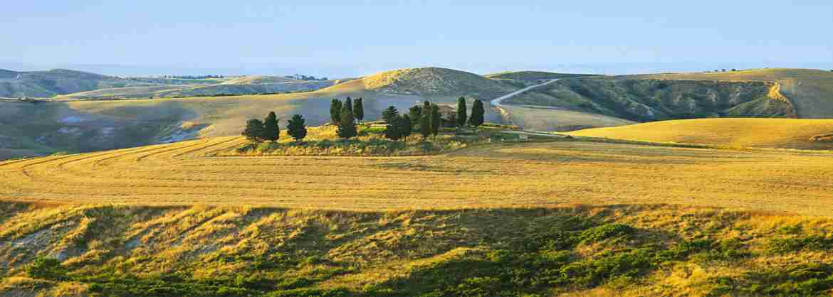 Day Tour of Tuscany from Florence: San Gimignano, Siena, Monteriggioni and Chianti