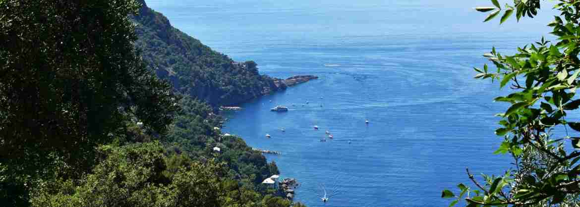 Hiking tour to San Fruttuoso Bay from Camogli in a small group